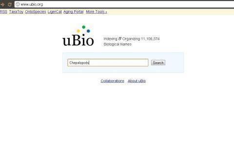 http://www.ubio.org/